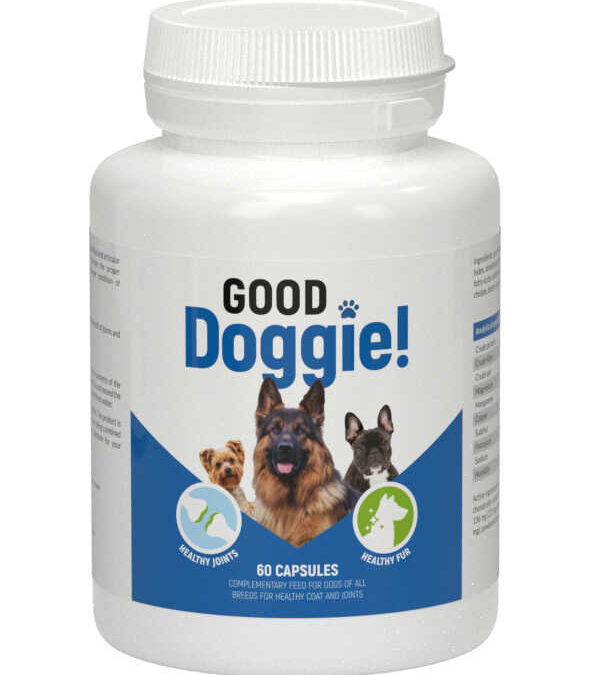 Good Doggie -dla zdrowia psów ✅ #Zamów online