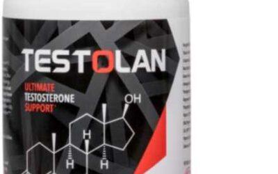 Testolan -testosteron ᐅ #Zamów online#